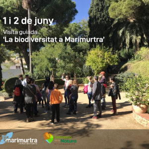 Setmana Natura _ Biodiversitat Marimurtra 2019