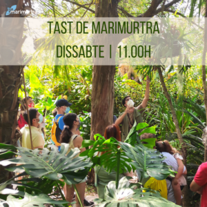 Tast de Marimurtra | Jardí Botànic Marimurtra