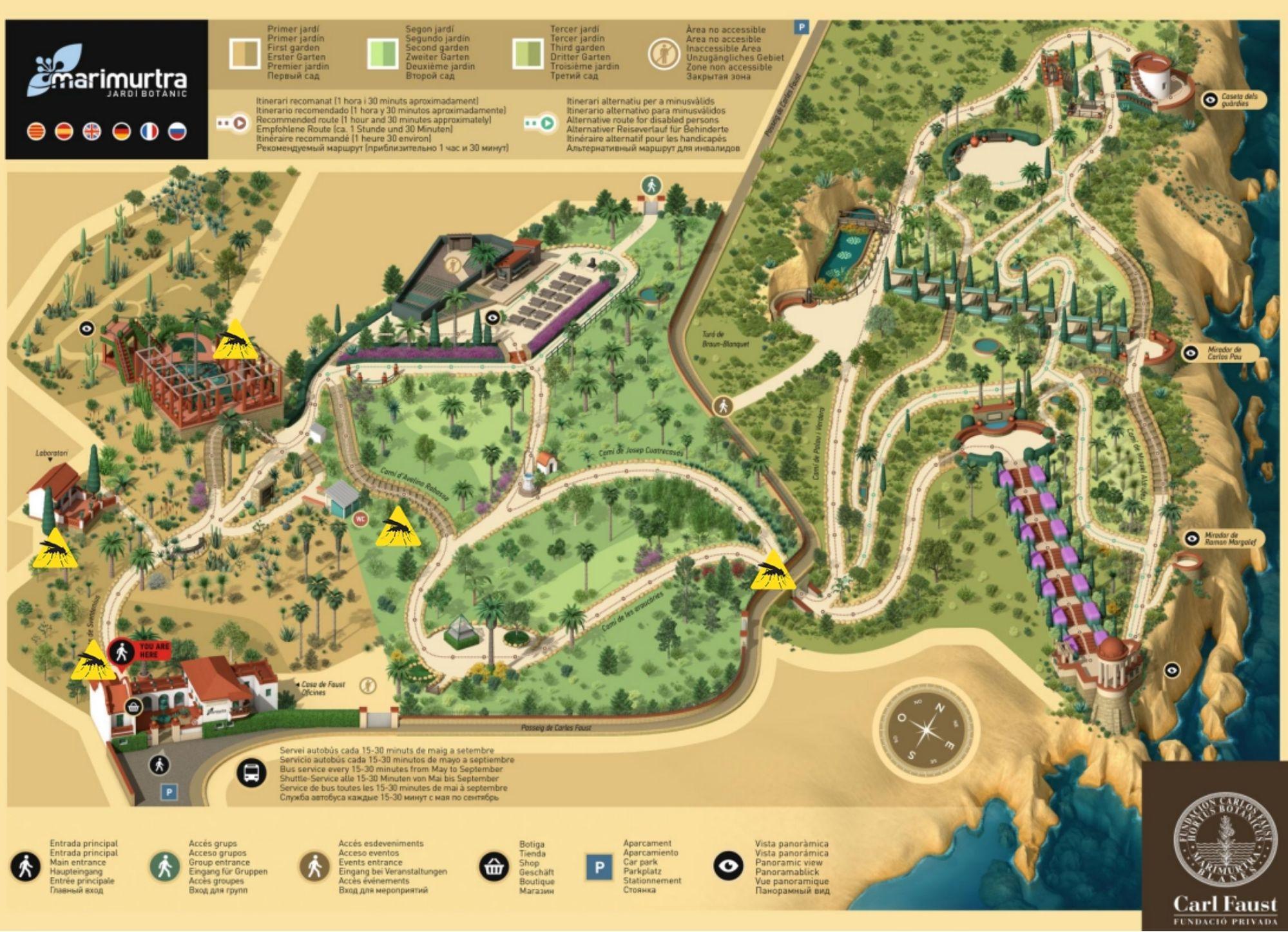 mapa trampes mosquit tigre marimurtra