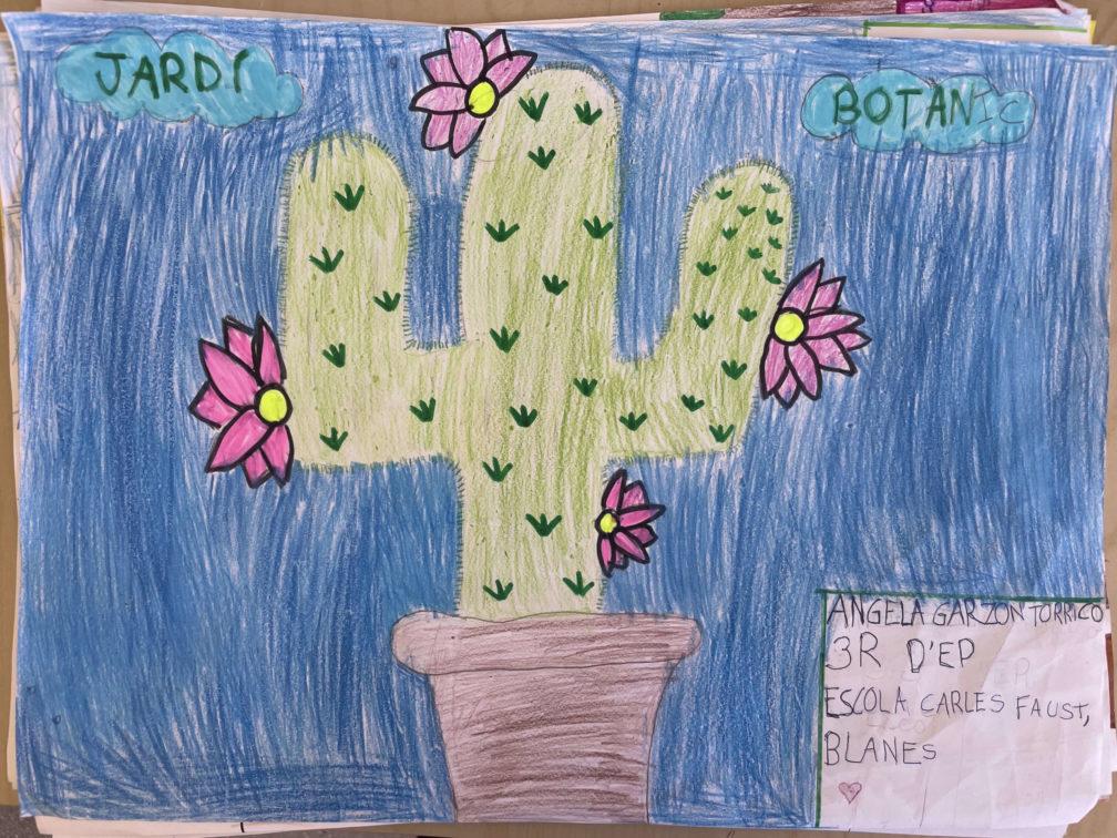 Concurs de dibuix Carles Faust | Jardí Botànic Marimurtra