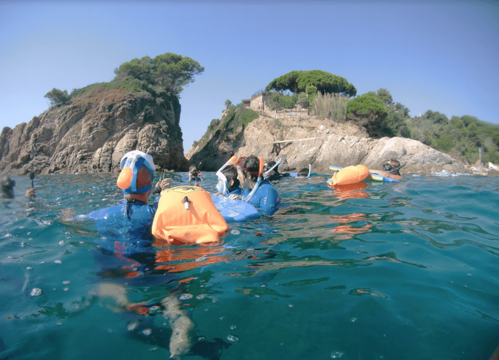 Marimurtra returns to the sea to raise awareness of botanical biodiversity with the Botanical Snorkel