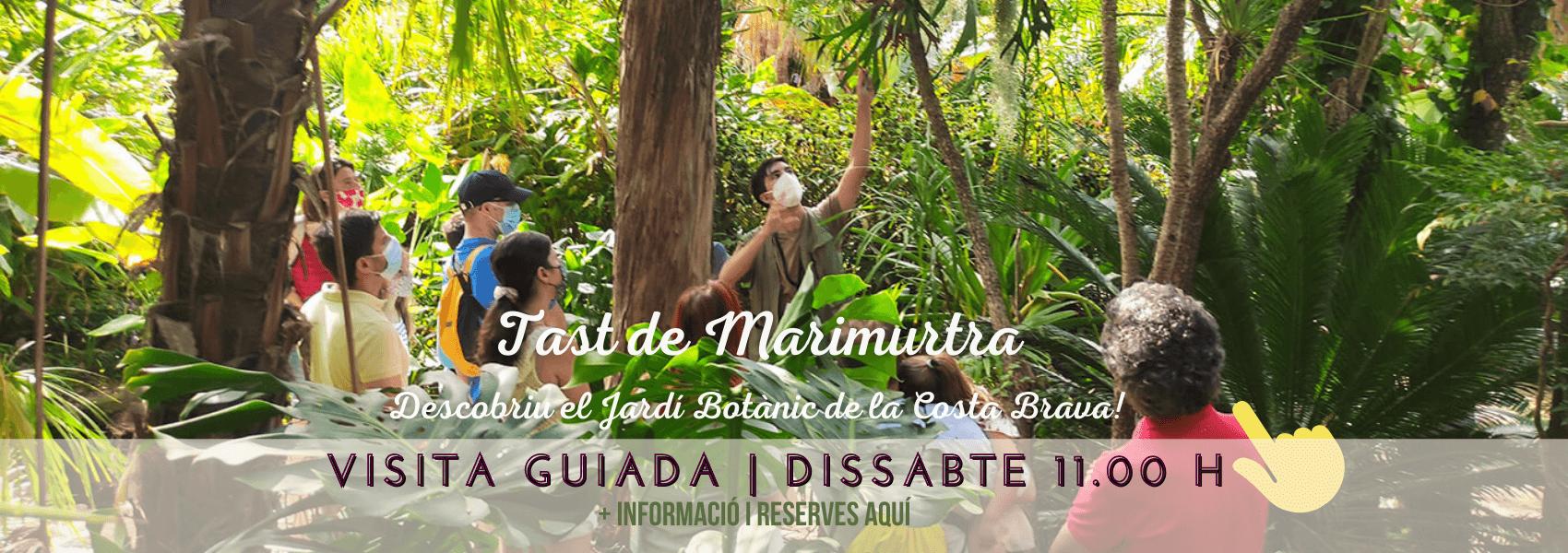 Visita Guiada Tast | Jardí Botànic Marimurtra